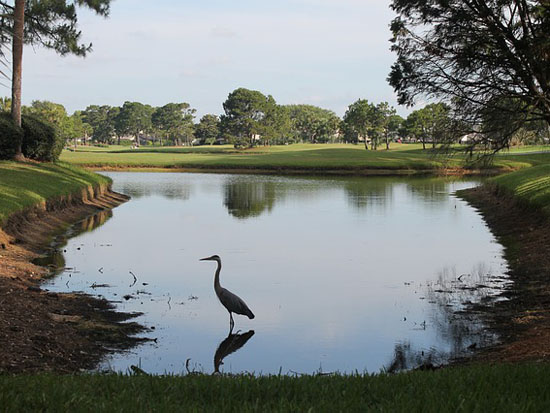 Ponce Inlet Golf Courses
